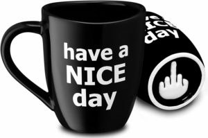 Decodyne Have a Nice Day Funny Coffee Mug, Funny Cup with Middle Finger on the Bottom holiday, Christmas, birthday gift for men, women, brother, sister, friends